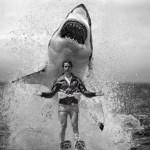 JumpTheSharkFonz